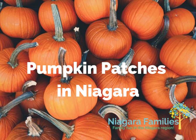 pumpkin patches in niagara