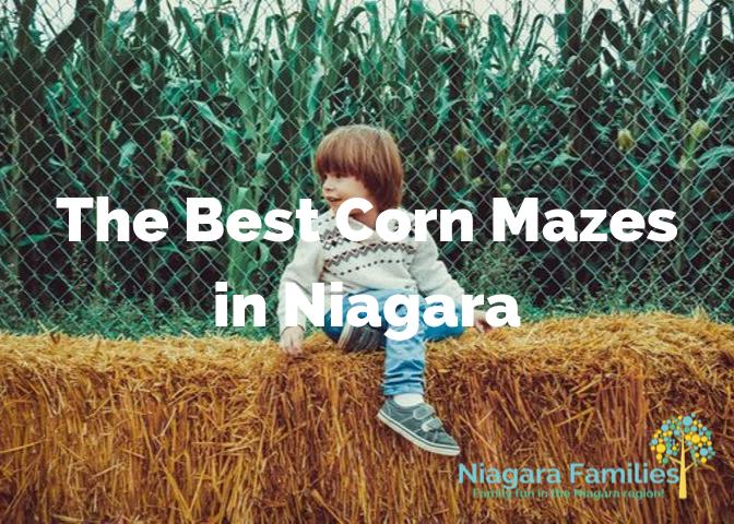 best corn mazes in Niagara