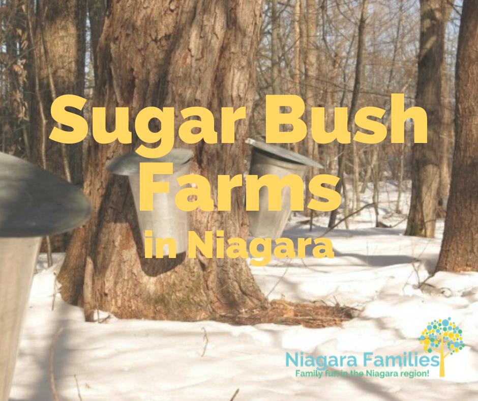sugar bush farms